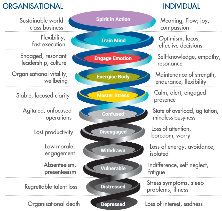 Model describing individual and organisational resilience